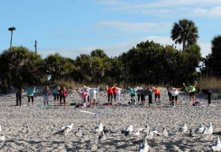 manasota-beach-yoga-birds
