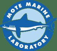 Mote Beach Condition Reports